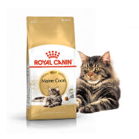 ROYAL  CANIN / Роял Канин Maine Coon корм для Мэйн Кунов